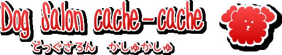 Dog Salon cache-cache